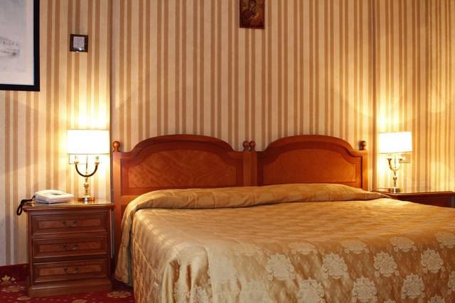 Standard double room for single use eliseo hotel rome